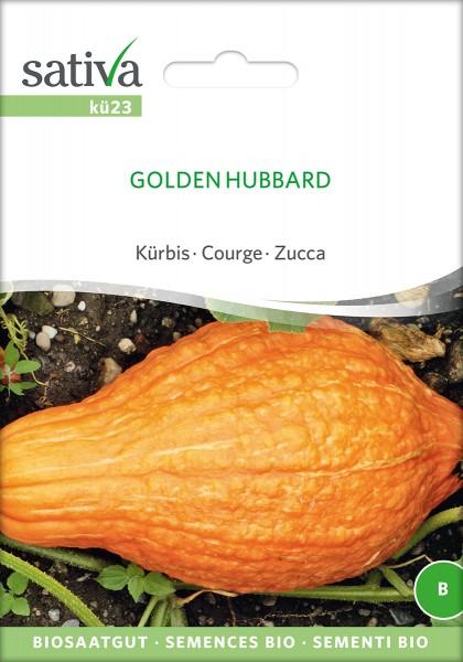 BIO Saatgut Kürbis Golden Hubbard