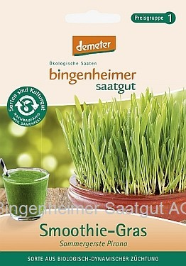 BIO Saatgut Smoothie-Gras Sommergerste Pirona