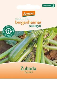 BIO Saatgut Zucchini Zuboda