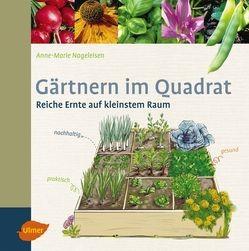 Gärtnern im Quadrat von Anne-Marie Nageleisen