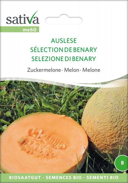 BIO Saatgut Melone Auslese (Benarys Zuckerkugel)