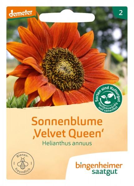 """BIO Saatgut Sonnenblume """"Velvet Queen"""""""