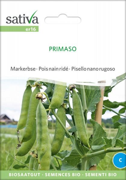 BIO Saatgut Markerbse Primaso