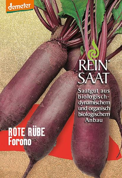 BIO Saatgut Rote Bete Forono