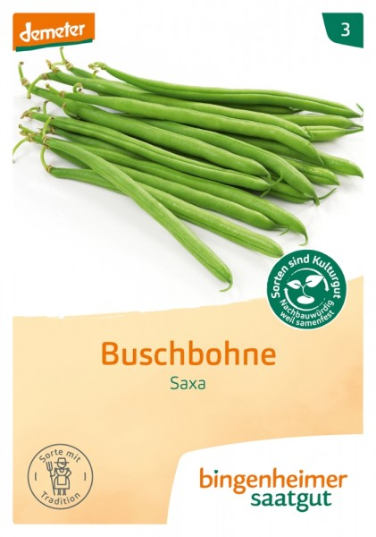 BIO Saatgut Buschbohne Saxa