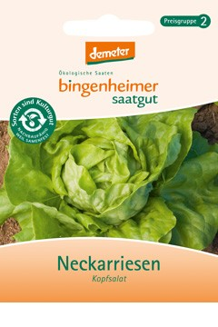 BIO Saatgut Kopfsalat Neckarriesen