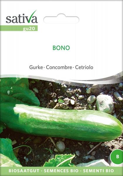 BIO Saatgut Freilandgurke Bono