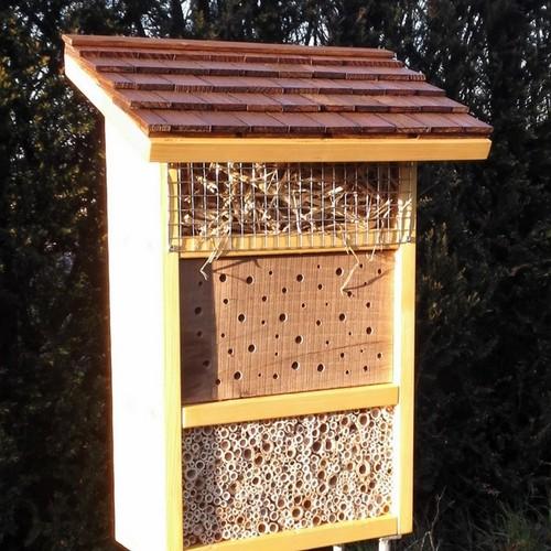 Insektenhotel zum goldenen Ohrwurm