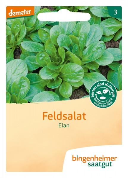 BIO Saatgut Feldsalat Elan