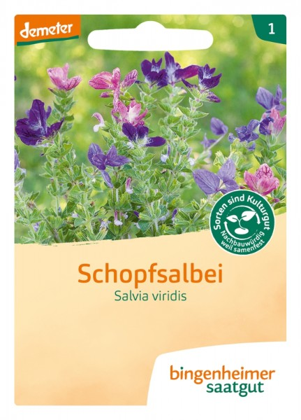 BIO Saatgut Schopfsalbei