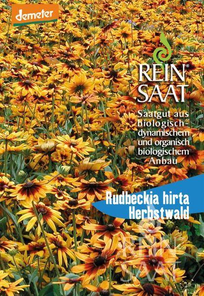 BIO Saatgut Sonnenhut Herbstwald