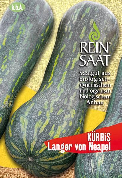 BIO Saatgut Kürbis Langer von Neapel