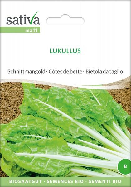 BIO Saatgut Mangold Lukullus