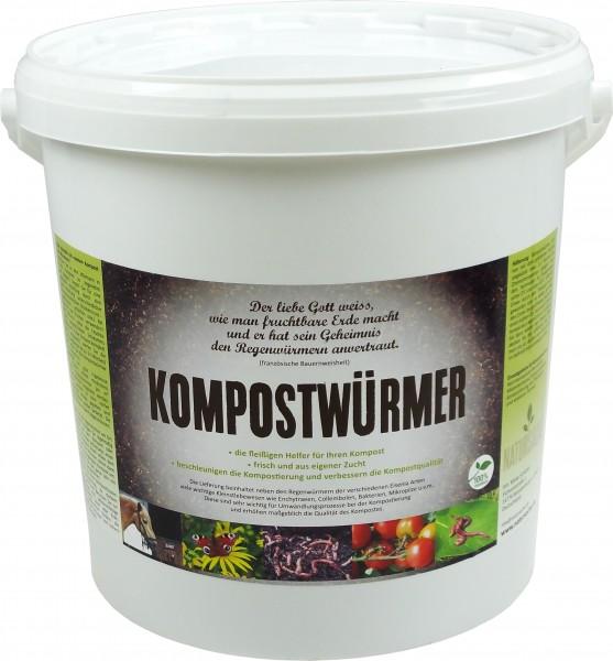 Kompostwürmer StarterSet