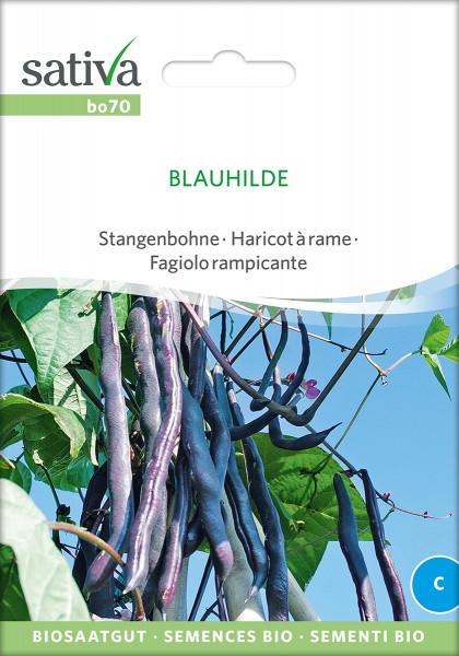 BIO Saatgut Stangenbohne Blauhilde