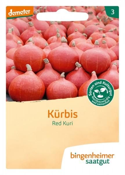 BIO Saatgut Hokkaido-Kürbis Red Kuri