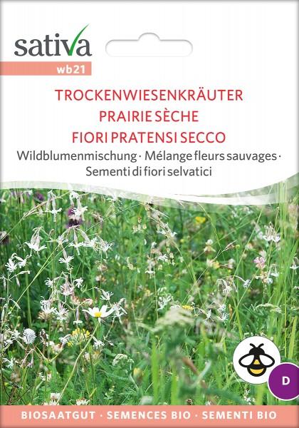 BIO Saatgut Wildblumenmischung Trockenwiesenkräuter