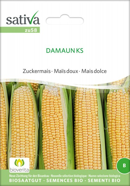 BIO Saatgut Zuckermais Damaun KS