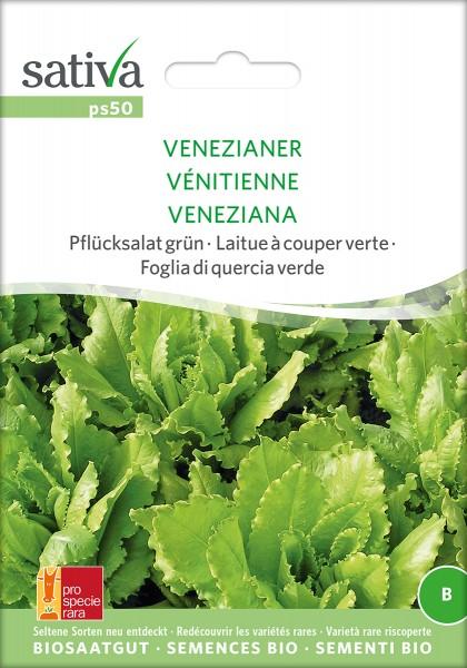 BIO Saatgut Pflücksalat Venezianer grün