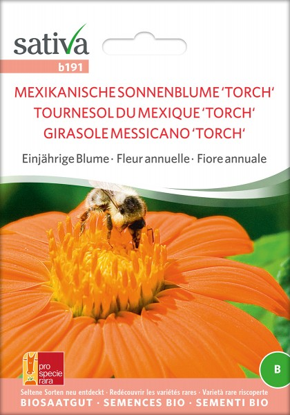 BIO Saatgut Mexikanische Sonnenblume 'Torch'