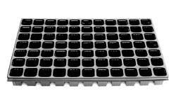 Anzuchtplatte QuickPot Standard QP® 77