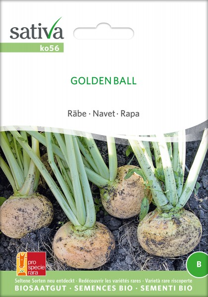 BIO Saatgut Stoppelrübe Goldkugel (Golden Ball)