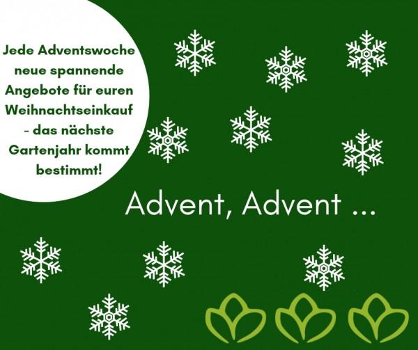 Advent-Advent-facebook-1wc3qqkLJFfvgg