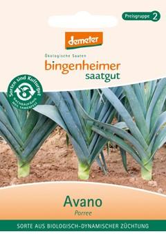 BIO Saatgut Lauch Avano/Blaugrüner Winter