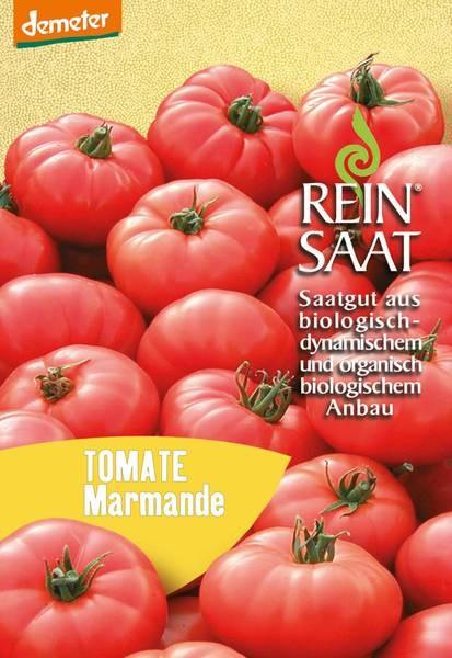 BIO Saatgut Tomate Marmande rot
