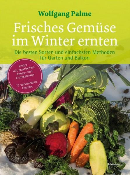 Frisches Gemüse im Winter ernten von Palme, Wolfgang