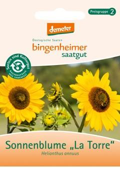 BIO Saatgut Sonnenblume La Torre