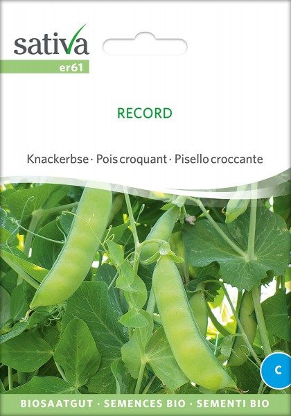 BIO Saatgut Knackerbse Record