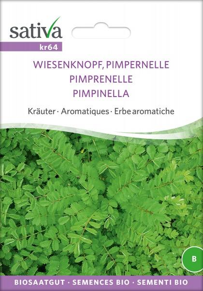 BIO Saatgut Pimpernelle