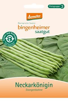 BIO Saatgut Stangenbohne Neckarkönigin