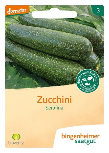 BIO Saatgut Zucchini Serafina