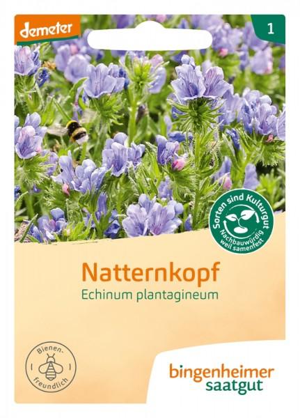 BIO Saatgut Natternkopf