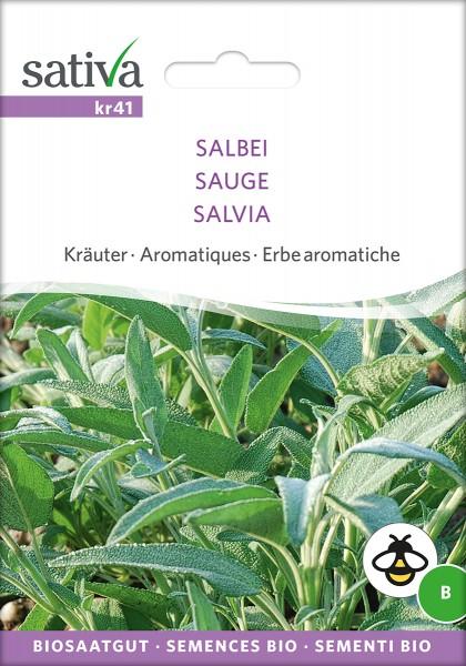 BIO Saatgut Salbei