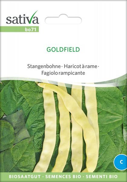 BIO Saatgut Stangenbohne Goldfield