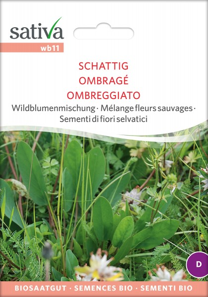 BIO Saatgut Wildblumenmischung Schattig