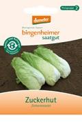 BIO Saatgut Zuckerhut