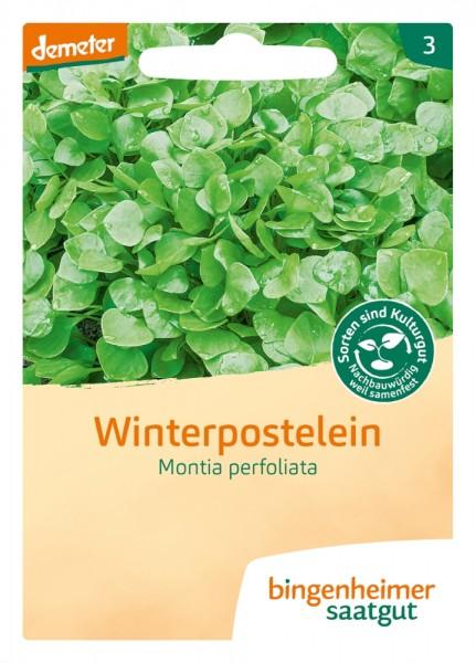 BIO Saatgut Winterpostelein