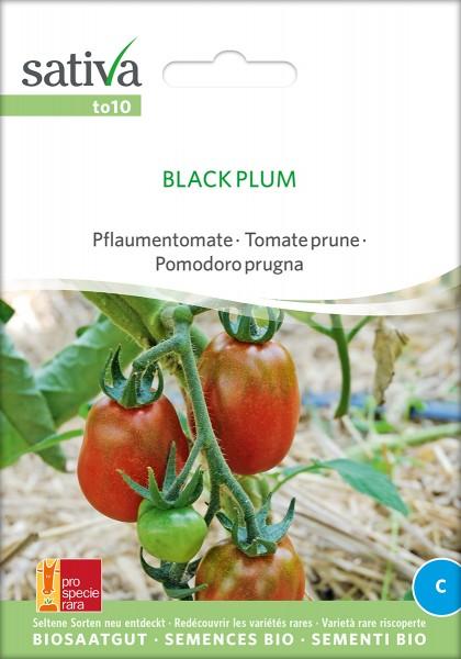 BIO Saatgut Tomate black plum