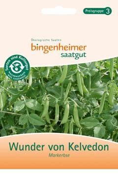 BIO Saatgut Markerbse Wunder von Kelvedon
