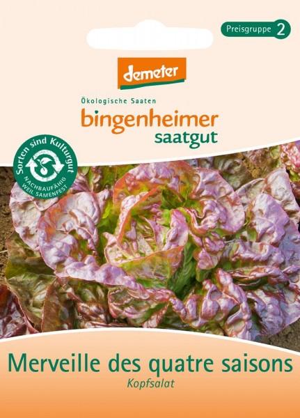 BIO Saatgut Kopfsalat Merveille des quatre saisons