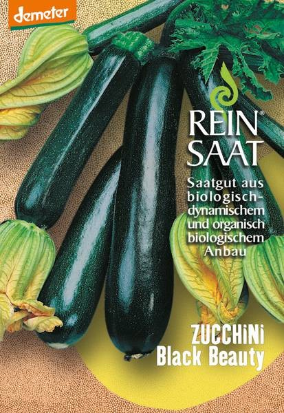 BIO Saatgut Zucchini Black Beauty
