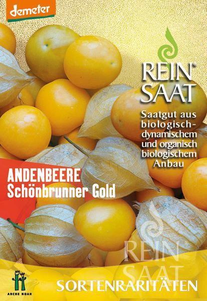 BIO Saatgut Physalis Schönbrunner Gold