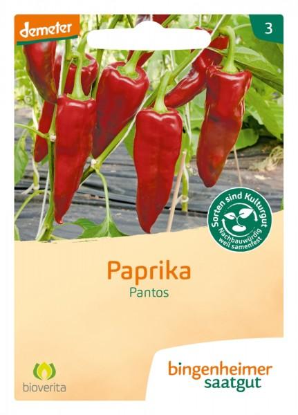 BIO Saatgut Paprika Pantos