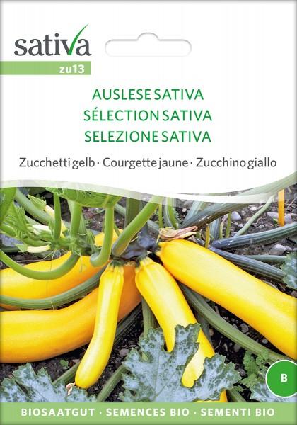 BIO Saatgut Zucchini Auslese Sativa